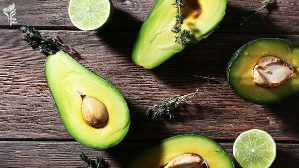 Health Benefits of Avocado Seed You Didn't Know